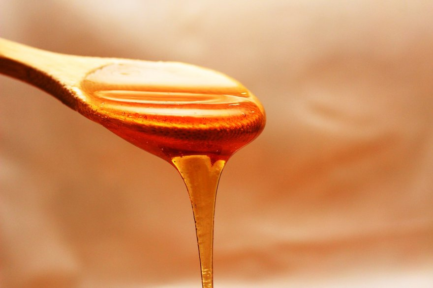honey-1970592_960_720.jpg